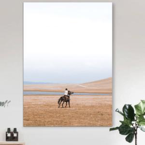 tranh canvas treo tuong ngua hoang 300x300 Trang chủ